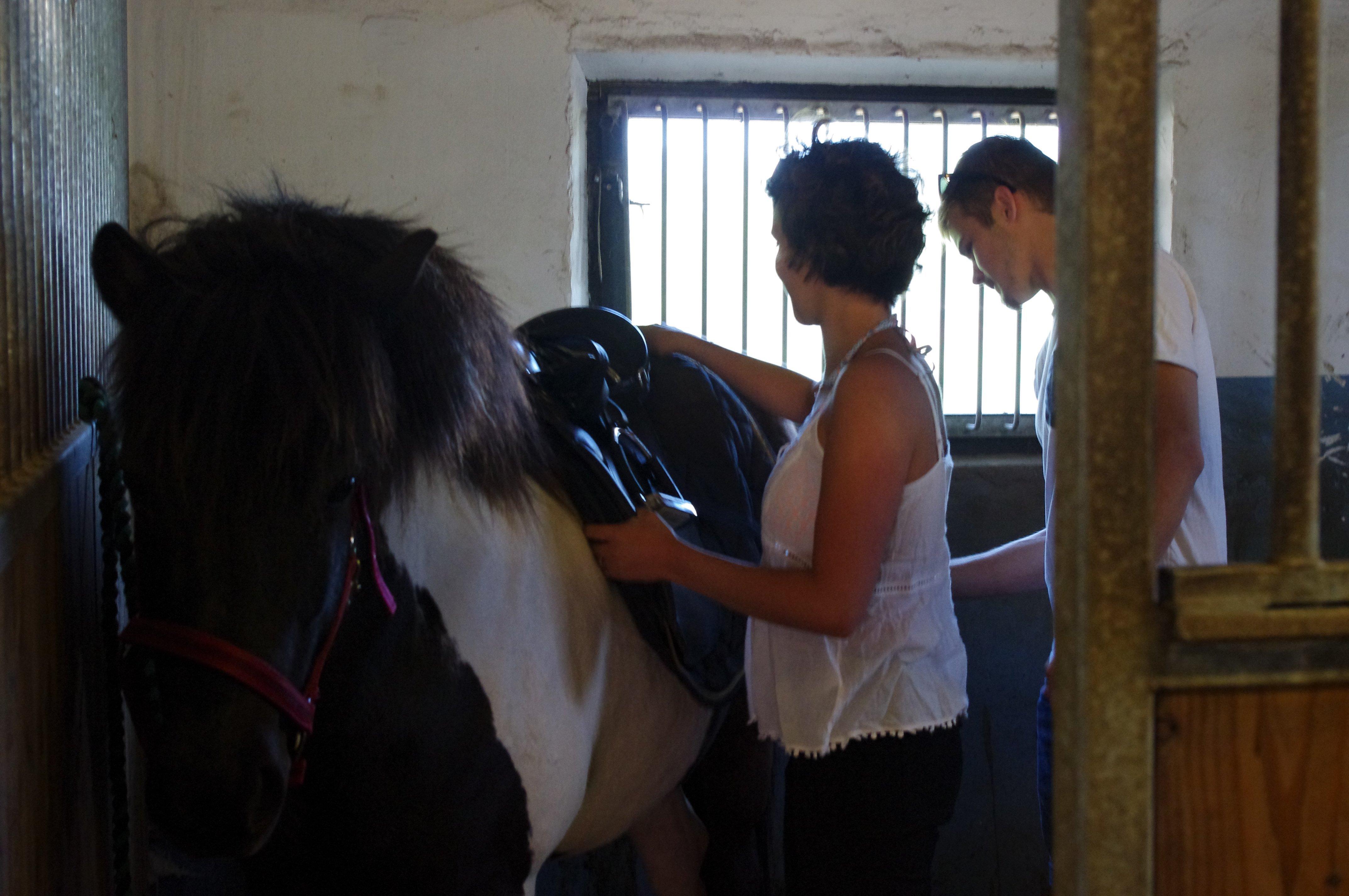 leana-emil-fit-saddle-tora Galleri-sparrarpislandshastar.com | 2020