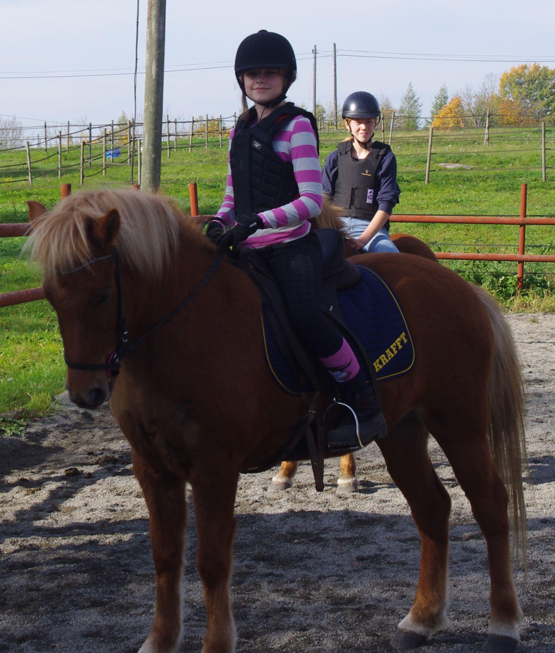 flori Our horses-sparrispislandshastar.com | 2020