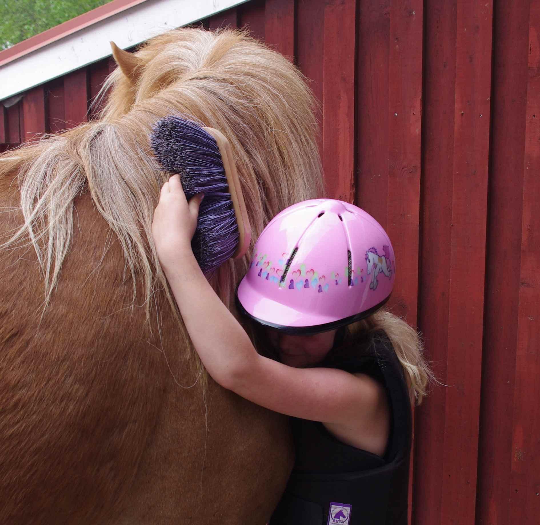 kid_hugging_horse Gallery-sparrarpislandshastar.com | 2020