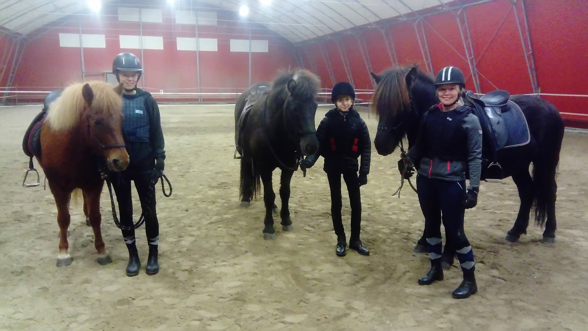 riding school riding school-sparrarpislandshastar.com | 2020