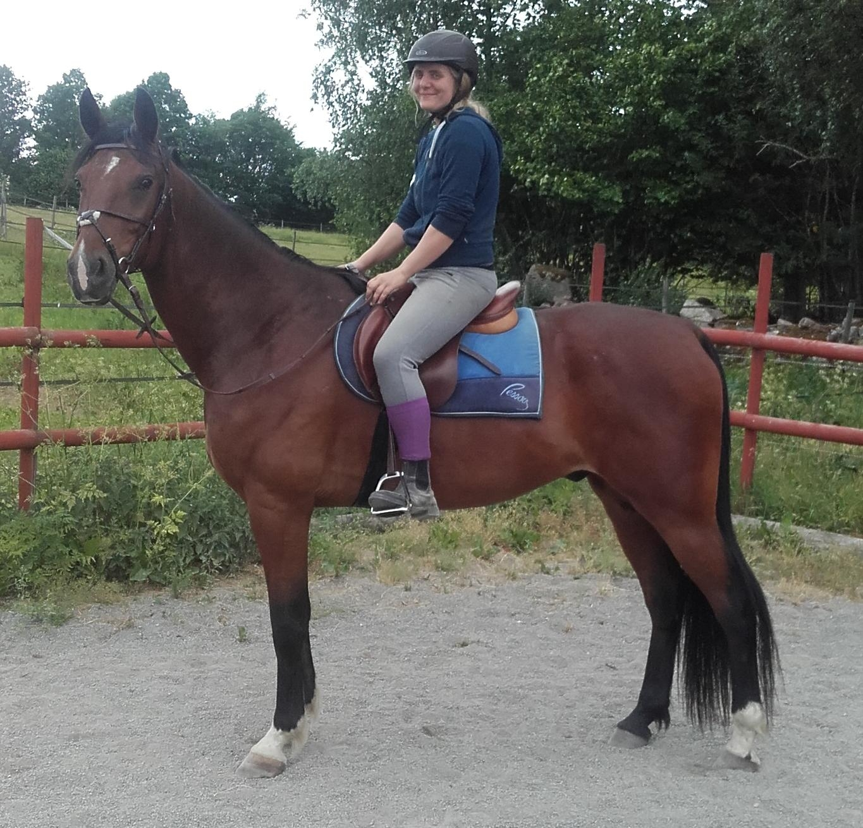 spiken_copy Unsere Pferde-sparrarpislandshastar.com | 2020