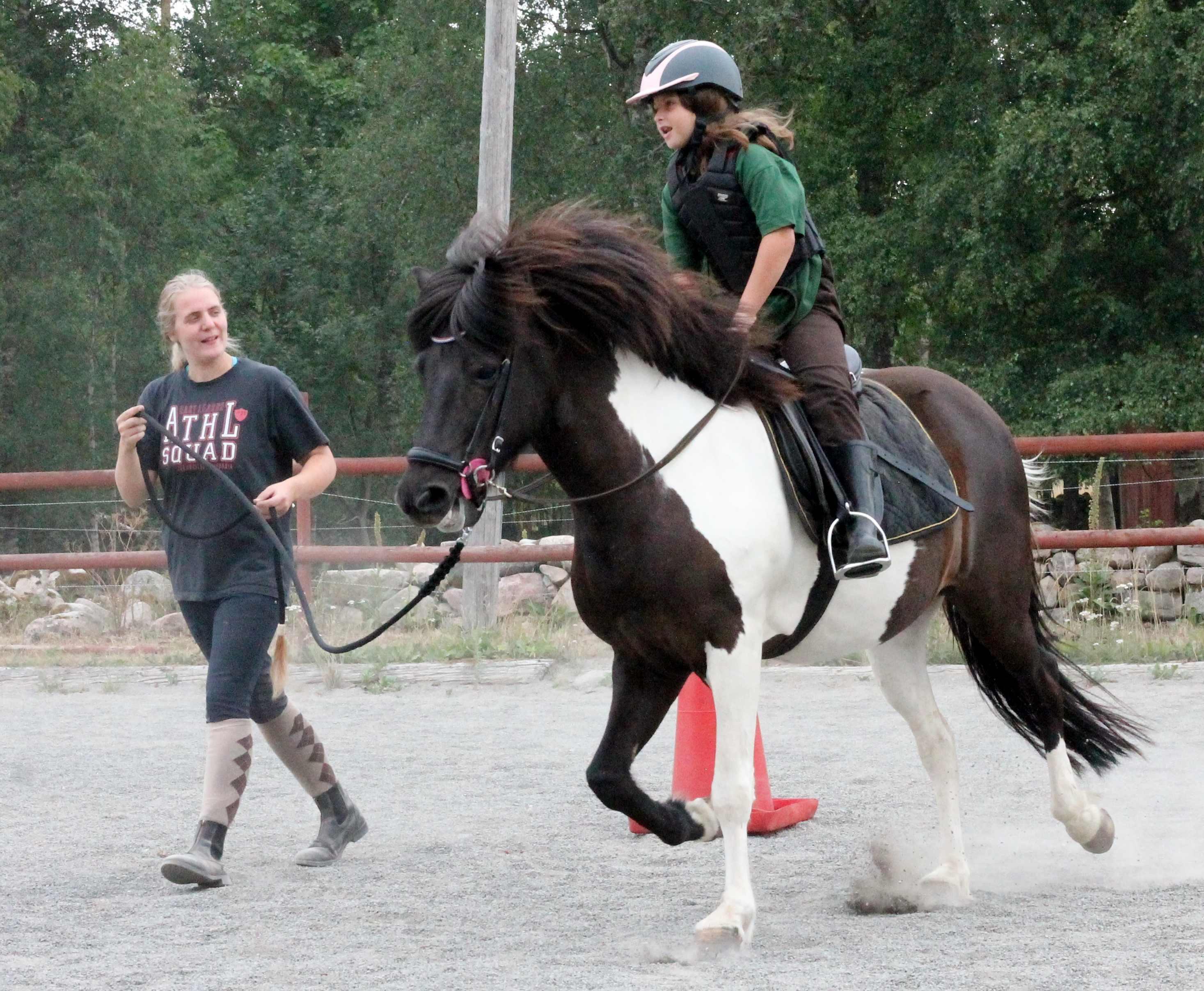 tora_lea Riding School-sparrarpislandshastar.com | 2020