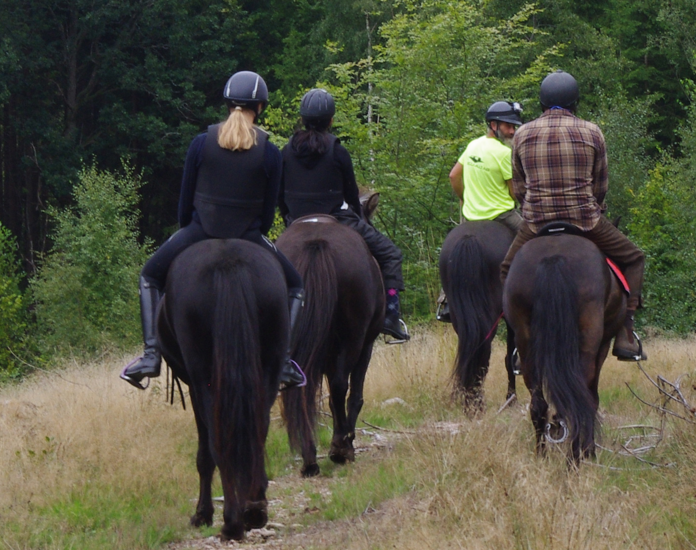 Checking-Ride-Group-während des Reitens Galleri-sparrarpislandshastar.com | 2020